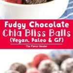 Fudgy Chocolate Chia Bliss Balls - fudgy, chocolatey and insanely delicious AND they're healthy, vegan, and paleo too! Just FOUR ingredients and a few minutes to make these treats your family will love!