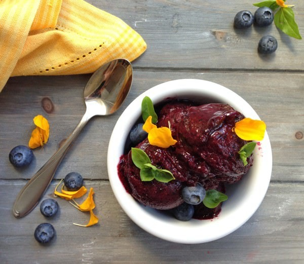 25 Delicious Frozen Treats for this Summer - Mixed Berry Sorbet