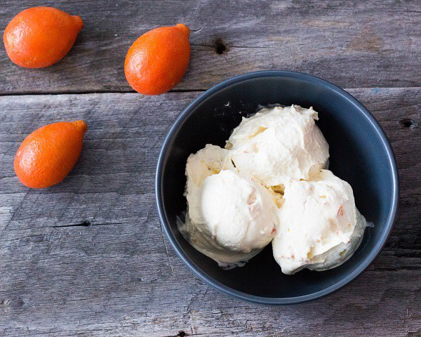 25 Delicious Frosty Summer Desserts Round up - Kumquat Ice Cream
