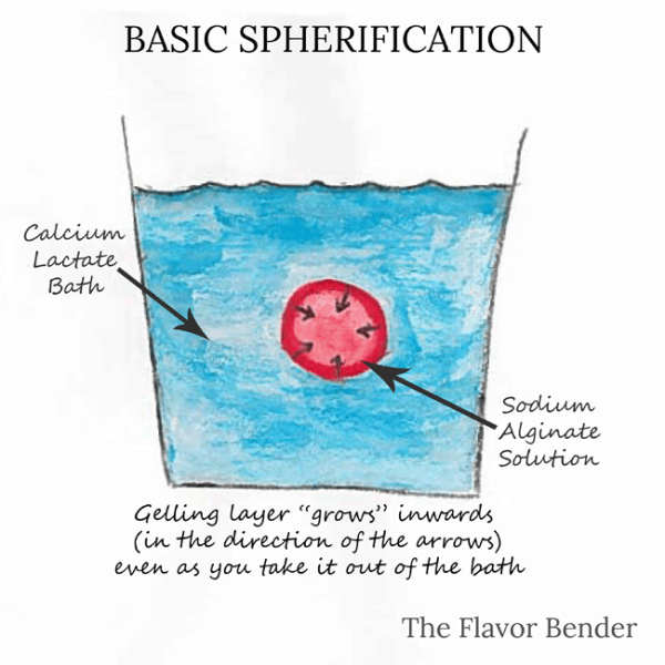 Basic Spherification - The Flavor Bender