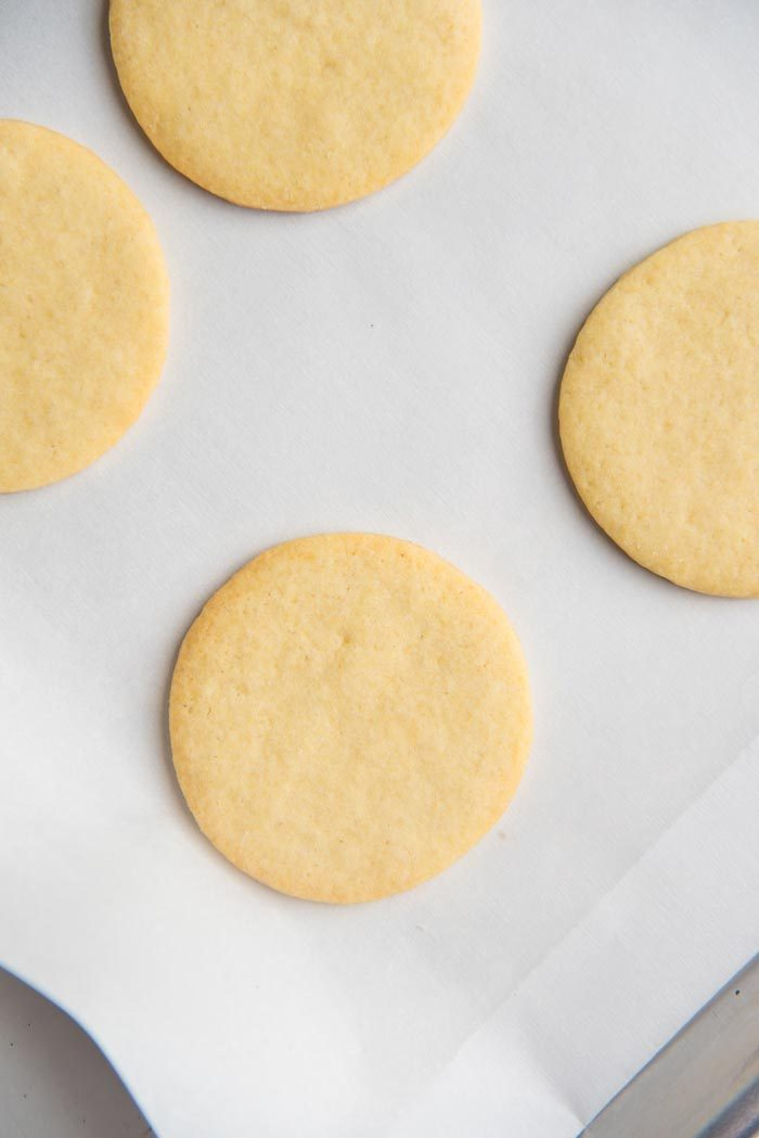 Baked round sugar cookies, straight out of the oven on a parchment lined baking tray