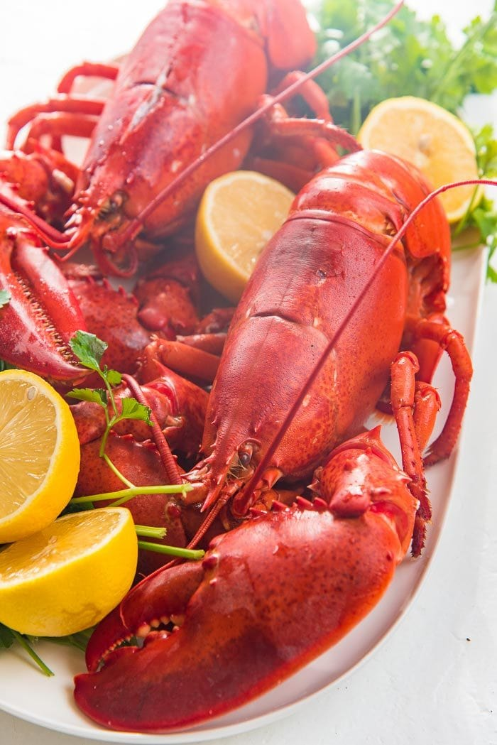 Two cooked lobsters placed on a white platter, with sliced lemon halves and herbs.