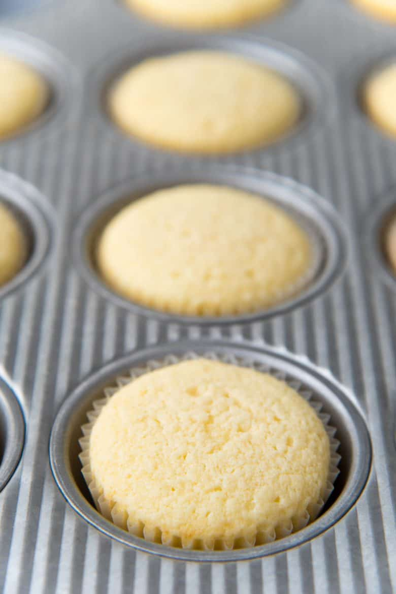 Freshly baked vanilla cupcakes
