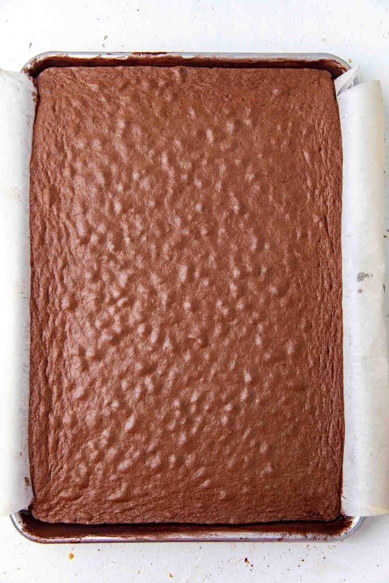 Freshly baked chocolate sponge cake for swiss roll