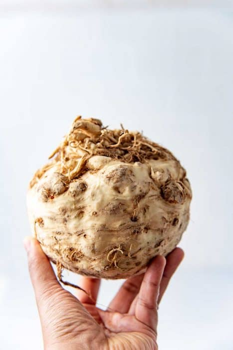 Holding up a large celeriac in the hand
